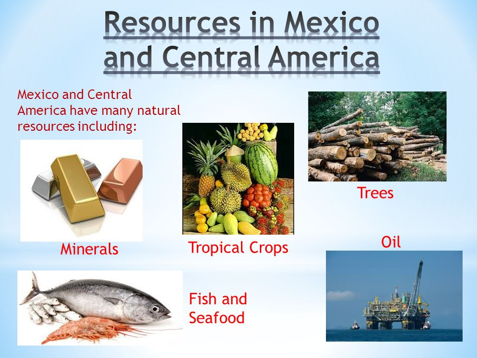 4 mexico and central america have many natural resources including minerals oil tropical crops trees fish and seafood