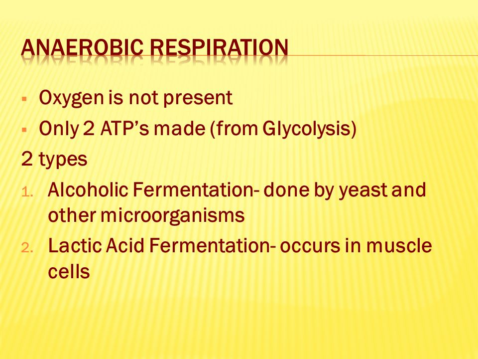  Oxygen is not present  Only 2 ATP's made (from Glycolysis) 2 types 1.