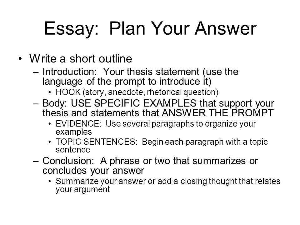 English 101 Essay  Essay  Environmental Science Essays also The Newspaper Essay Cahsee The Writing Task The Essay Overview Law Business  Business Ethics Essay Topics