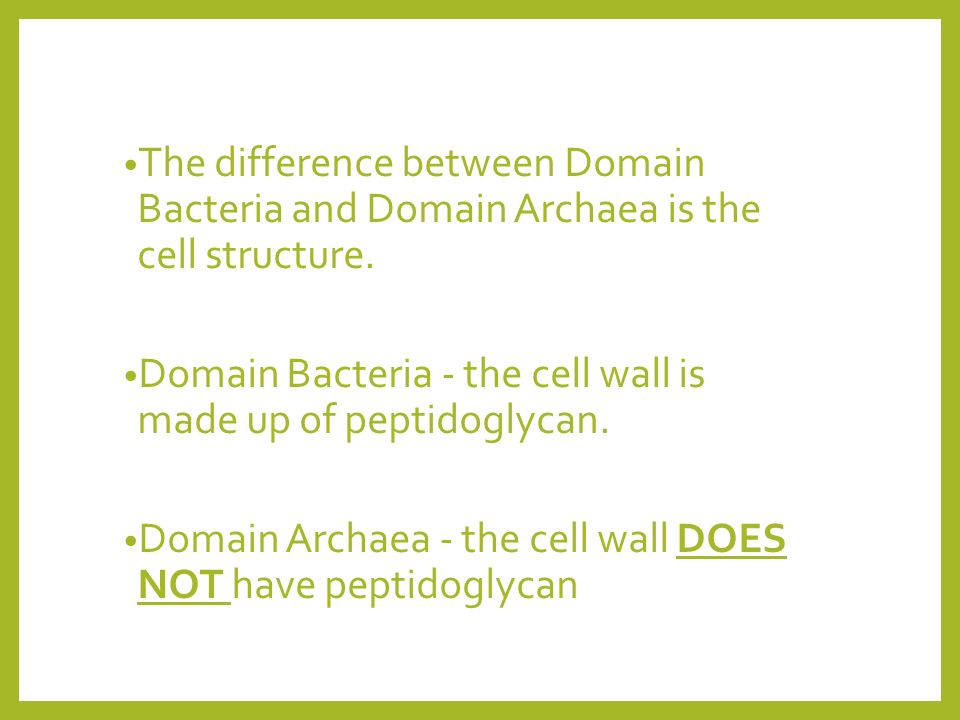 The difference between Domain Bacteria and Domain Archaea is the cell structure.