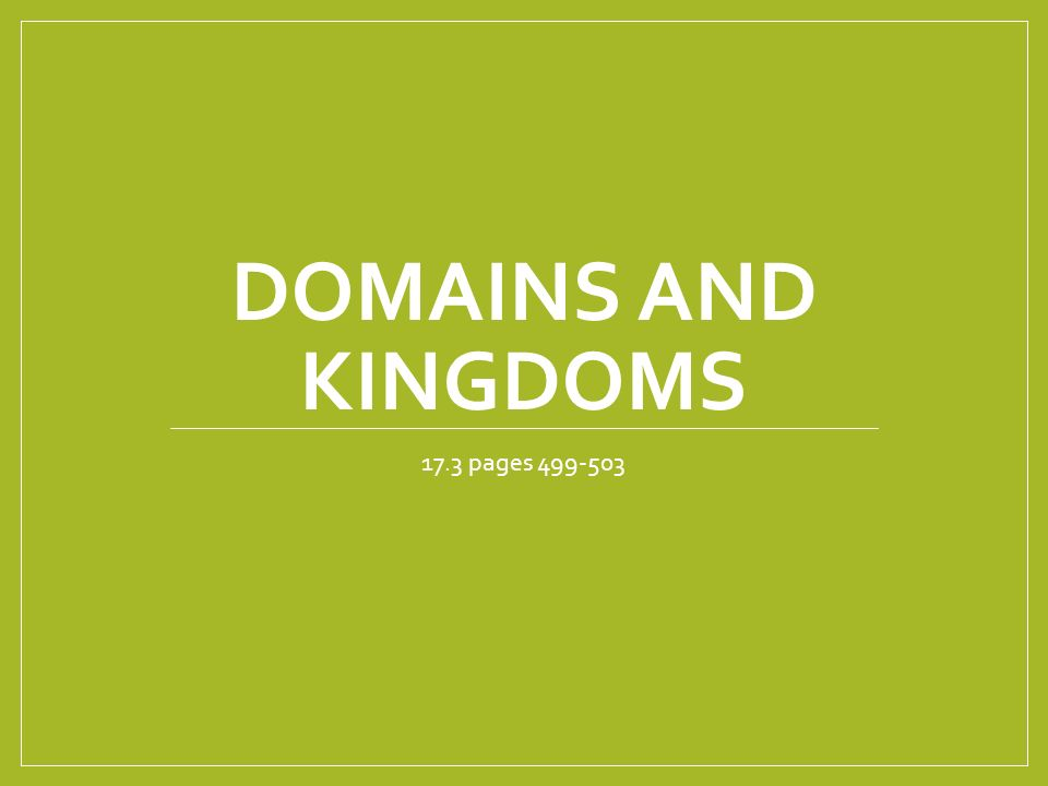 DOMAINS AND KINGDOMS 17.3 pages