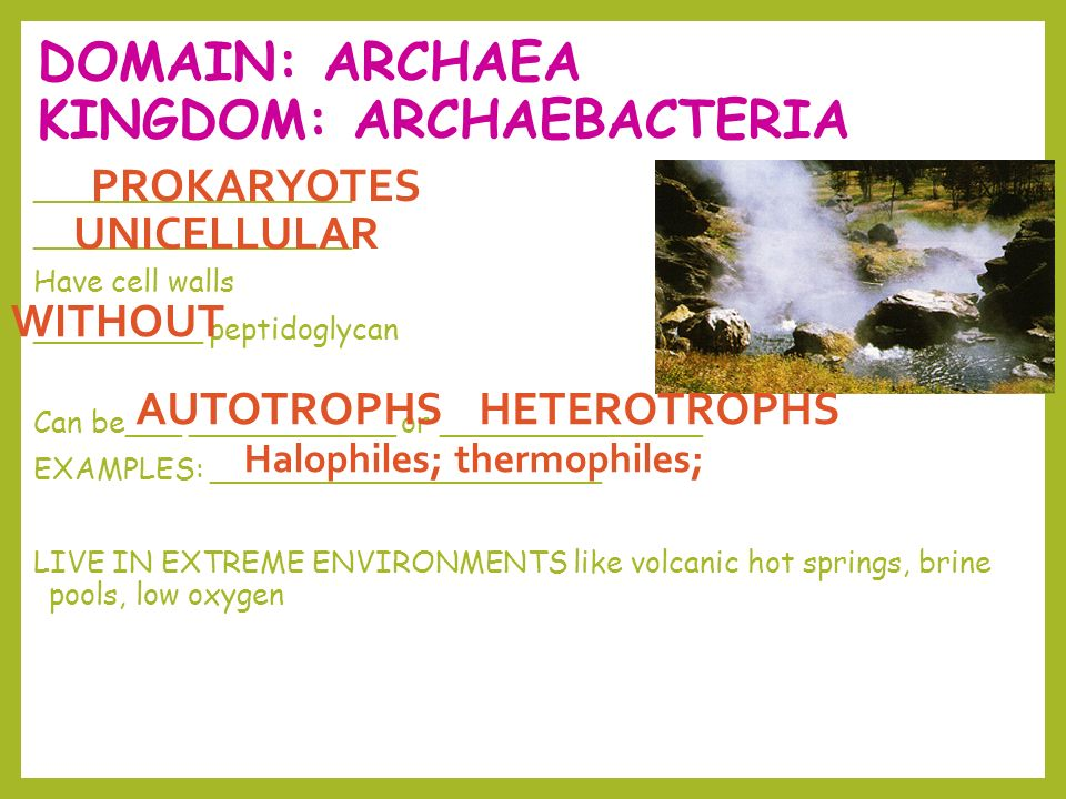 DOMAIN: ARCHAEA KINGDOM: ARCHAEBACTERIA _________________ Have cell walls _________ peptidoglycan Can be___ ___________ or ______________ EXAMPLES: _____________________ LIVE IN EXTREME ENVIRONMENTS like volcanic hot springs, brine pools, low oxygen PROKARYOTES WITHOUT UNICELLULAR AUTOTROPHS HETEROTROPHS Halophiles; thermophiles;