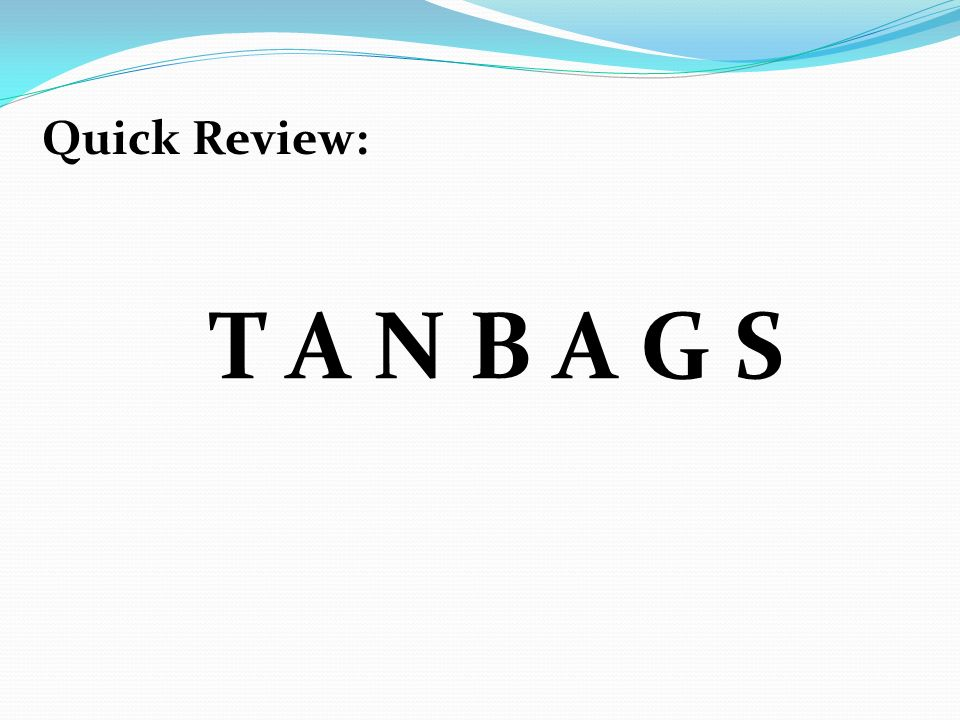 Quick Review: T A N B A G S