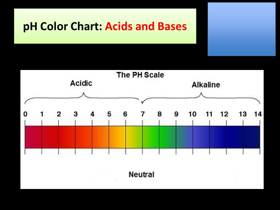 Acids And Bases Ph Color Chart Acids And Bases Ppt Download