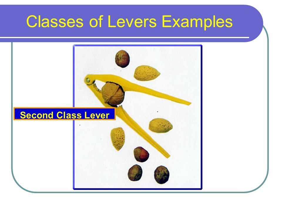 Lever systems Objectives: 1  Identify the three types of