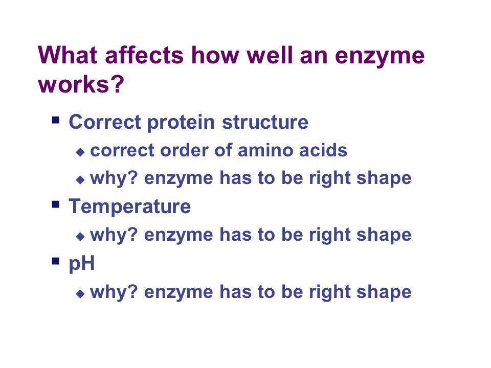 More about Enzymes: What Affects Enzymes