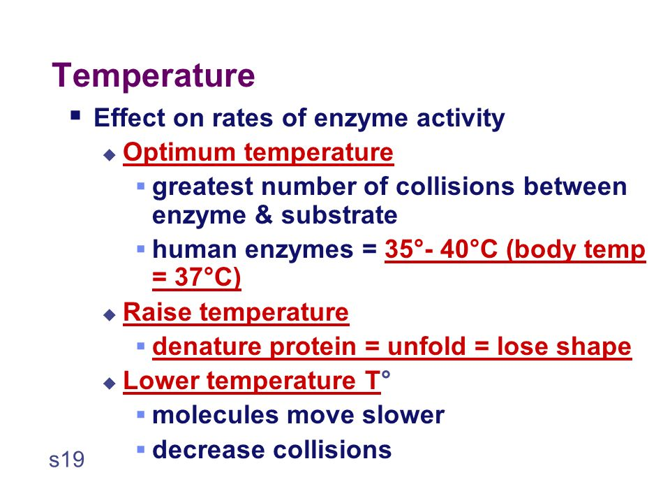 37° Temperature temperature reaction rate What's happening here !