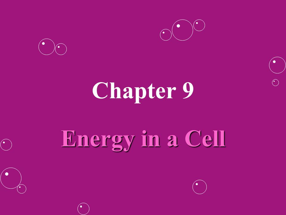 Chapter 9 Energy In A Cell Cells Need