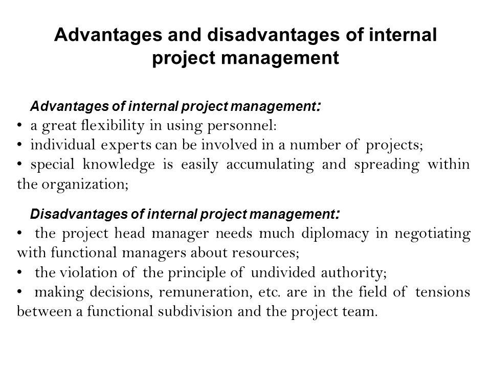 disadvantages of project management