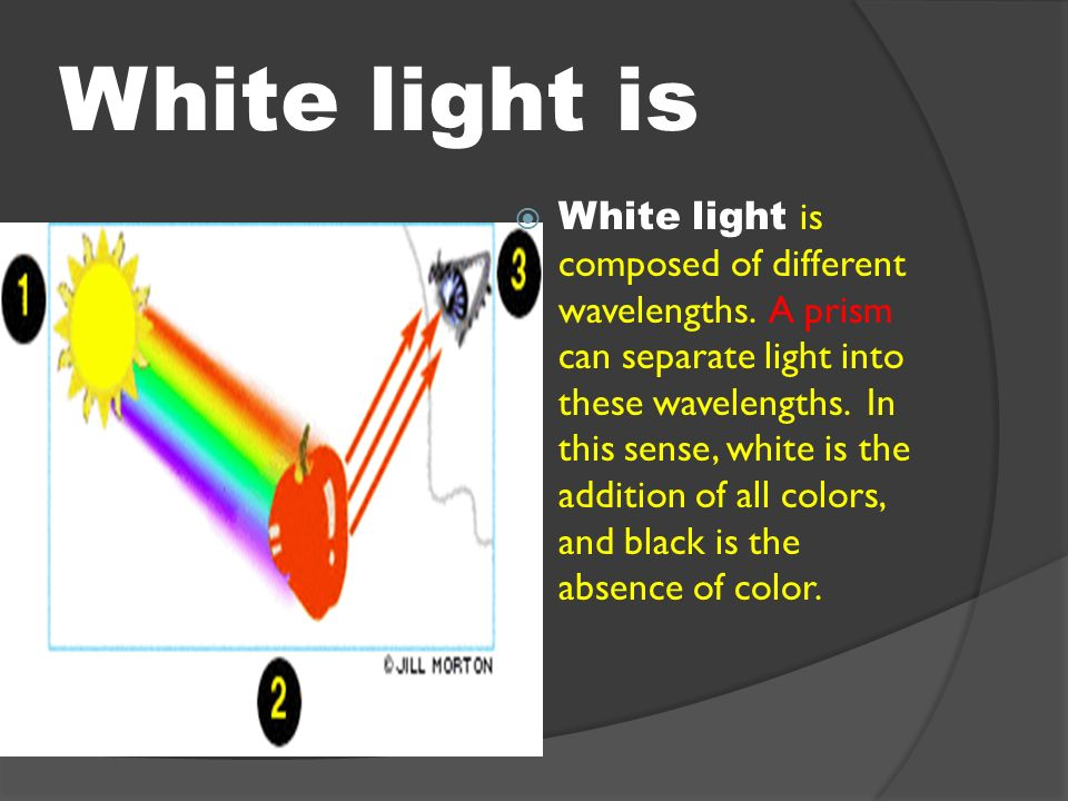 color theory the color wheel a color wheel how do we see color