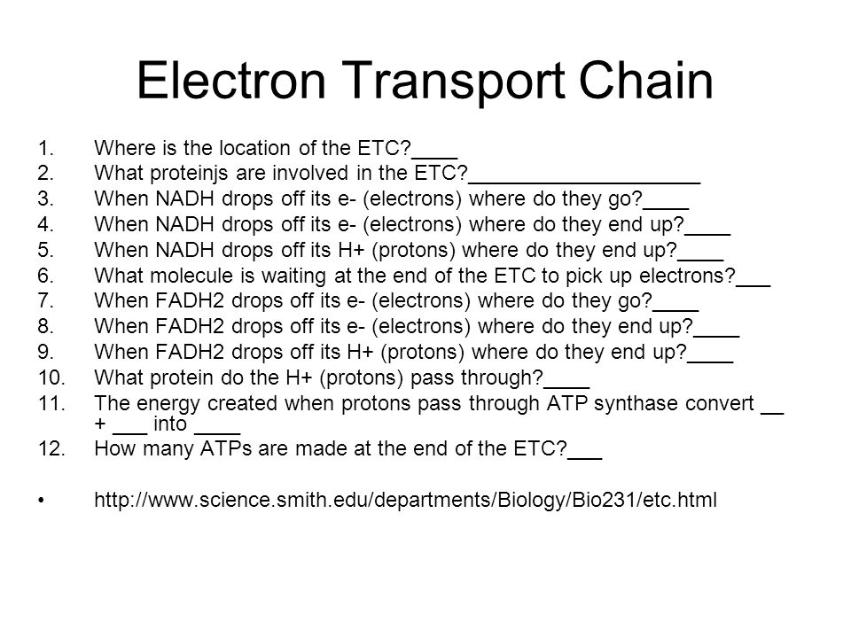 Dispatch 1get a book 2 explain this diagram intermediate step 3 electron transport ccuart Image collections