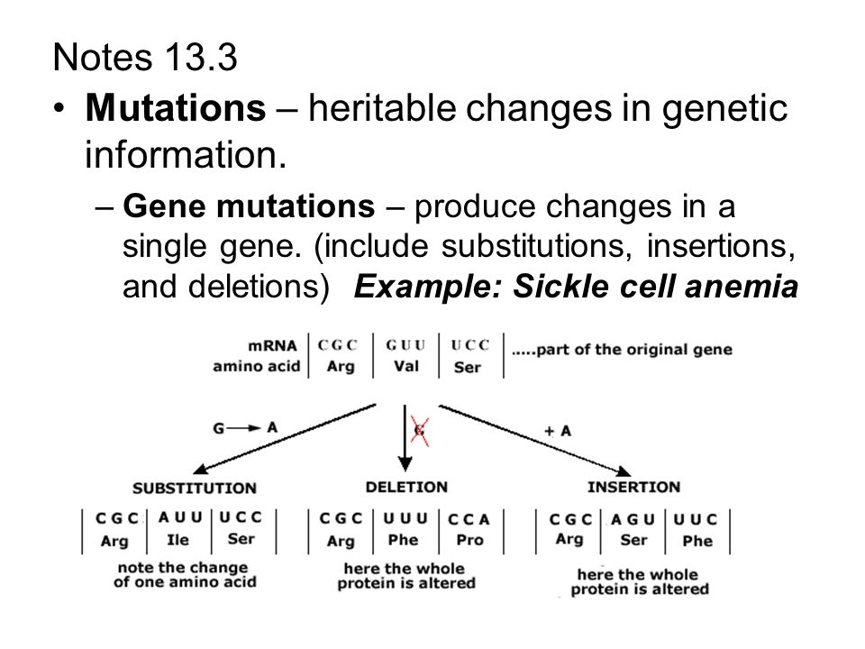 Mutations Worksheet Answer Key List One Way In Which The Model Simplified The Biological Processes That Occur In Real Cells