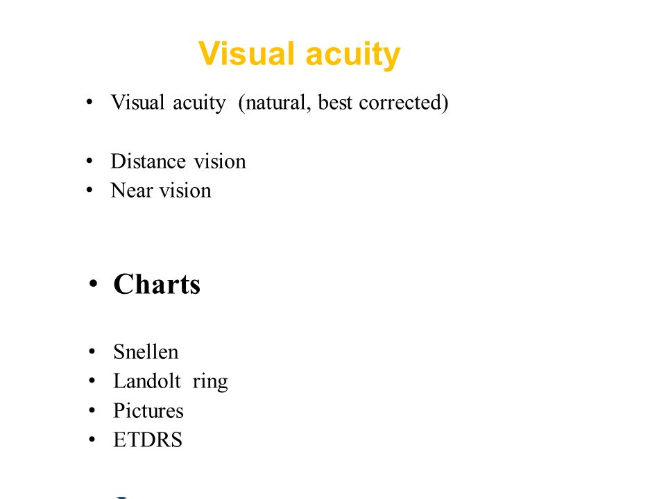Examination techniques in ophthalmology E  Vlková et al
