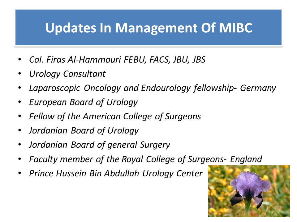 Updates In Management Of MIBC Col  Firas Al-Hammouri FEBU