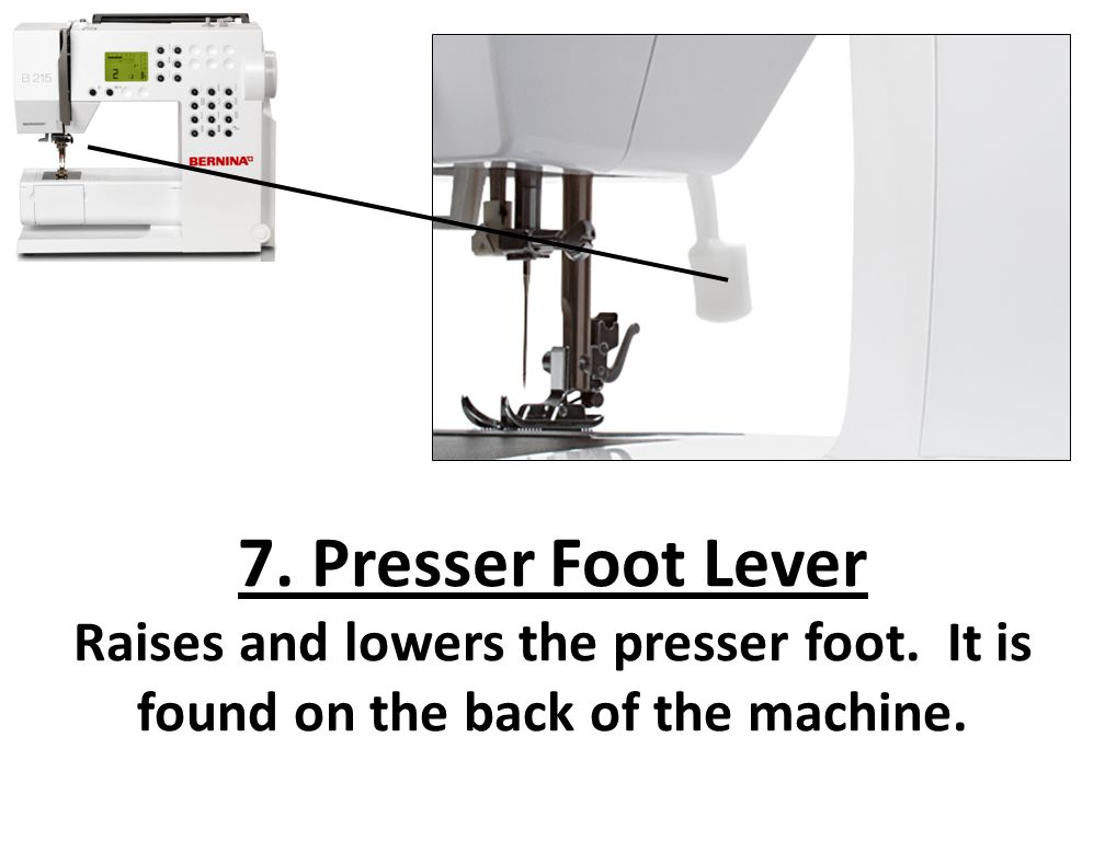 Intro To The Sewing Machine 40 Stitch Plate Where The Seam Mesmerizing Sewing Machine Presser Foot Lever