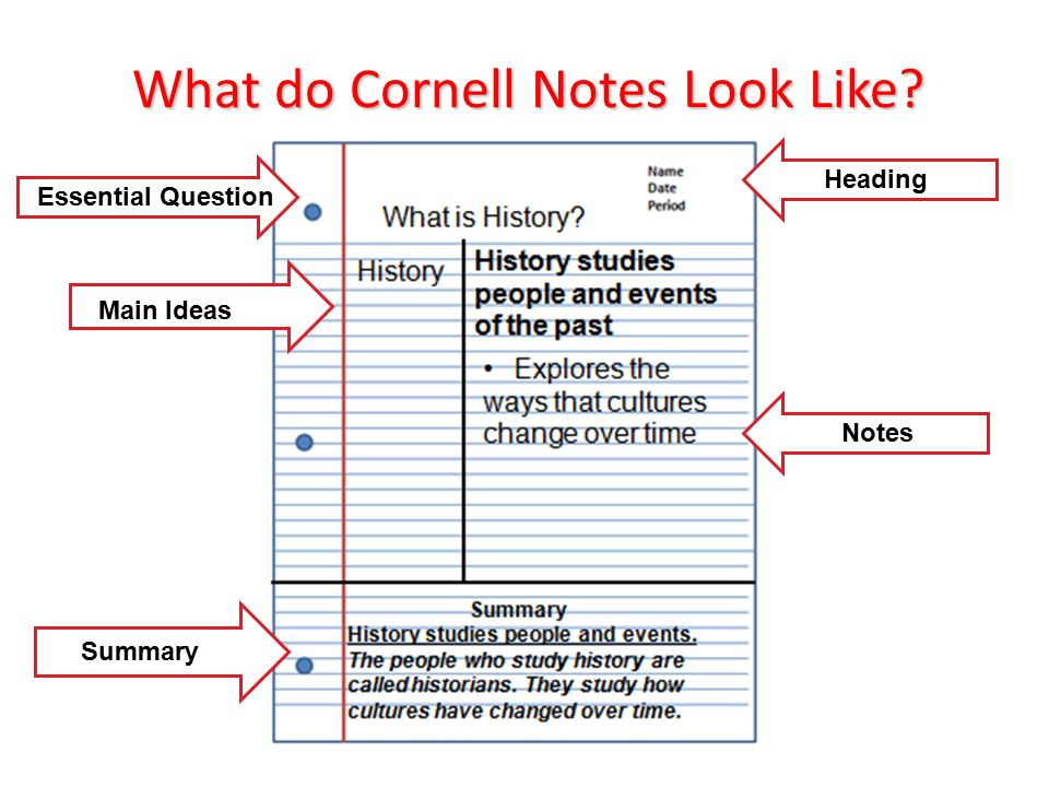 What do Cornell Notes Look Like Heading Notes Essential Question Main Ideas Summary