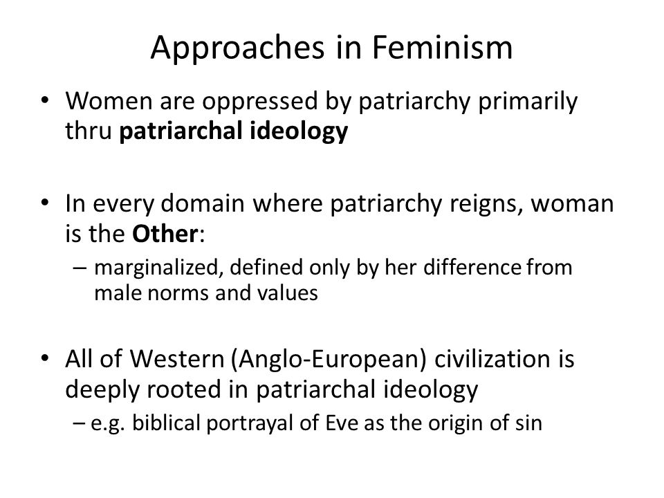 feminism s he concerned with the ways in which literature other