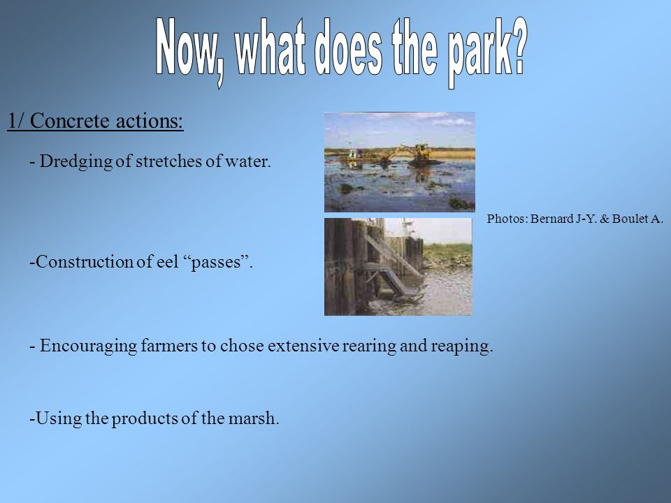 1/ Concrete actions: - Dredging of stretches of water.