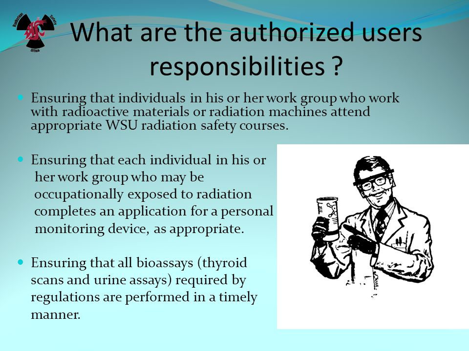 What are the authorized users responsibilities .