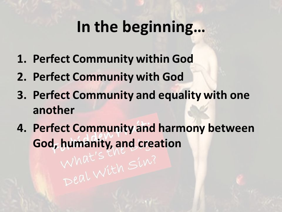 In the beginning… 1.Perfect Community within God 2.Perfect Community with God 3.Perfect Community and equality with one another 4.Perfect Community and harmony between God, humanity, and creation