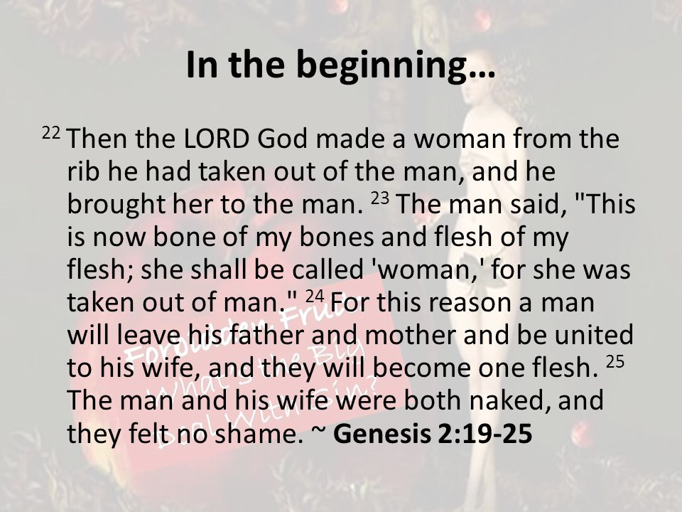 In the beginning… 22 Then the LORD God made a woman from the rib he had taken out of the man, and he brought her to the man.