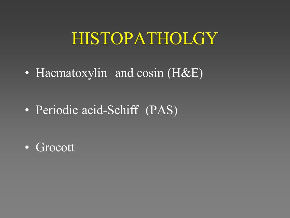 HISTOPATHOLGY Haematoxylin and eosin (H&E) Periodic acid-Schiff (PAS) Grocott