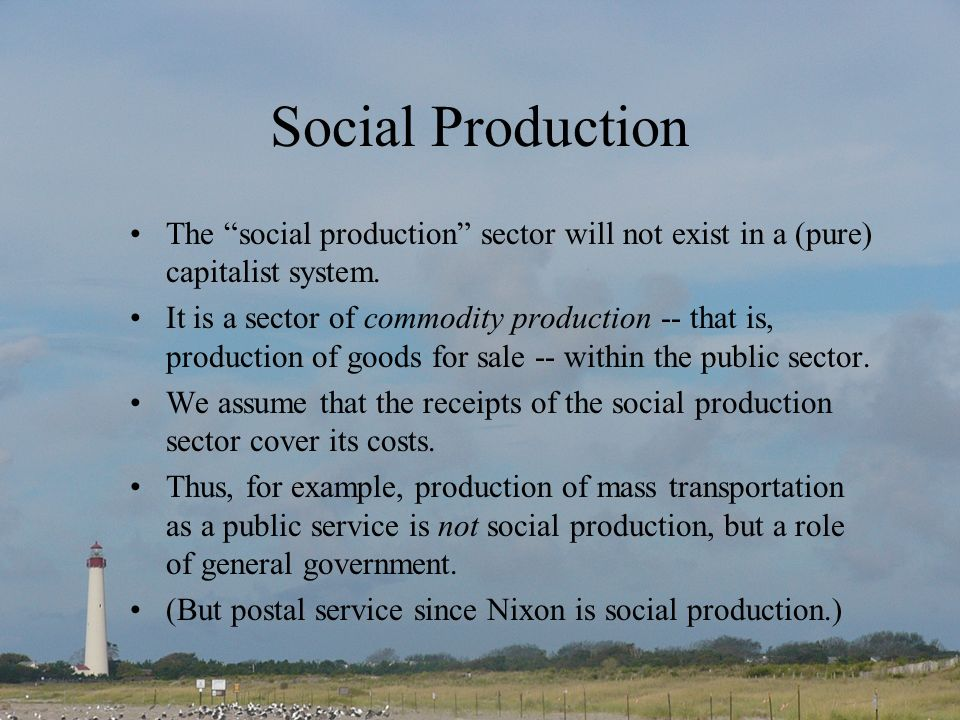 Social Production The social production sector will not exist in a (pure) capitalist system.