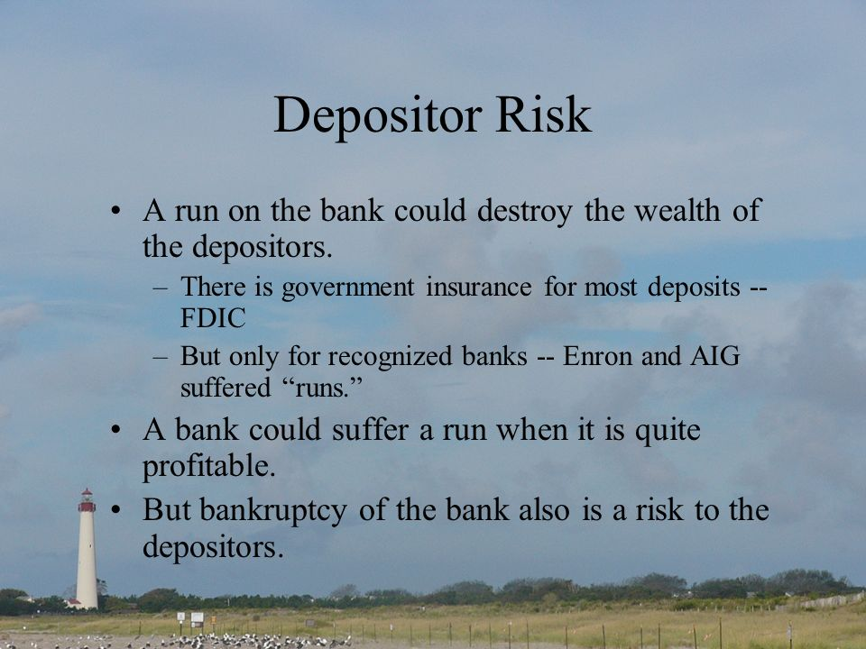 Depositor Risk A run on the bank could destroy the wealth of the depositors.