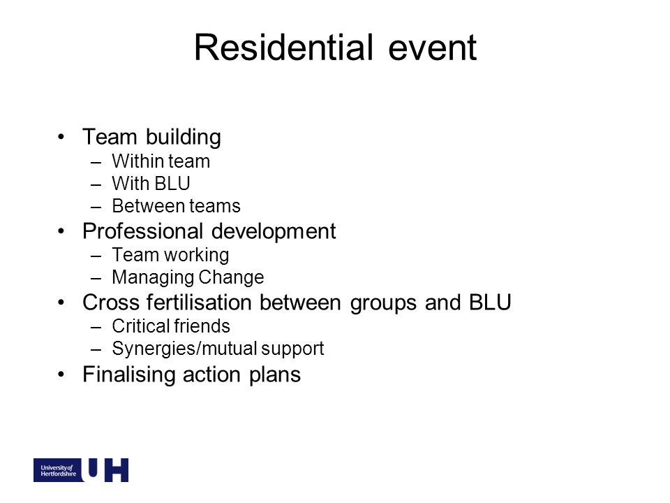 Residential event Team building –Within team –With BLU –Between teams Professional development –Team working –Managing Change Cross fertilisation between groups and BLU –Critical friends –Synergies/mutual support Finalising action plans