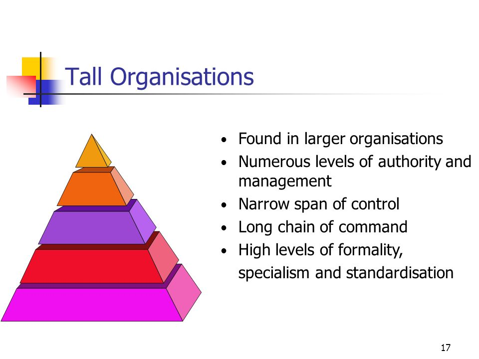 16 Flat Organisations Characteristics Few levels of authority and management Short chain of command Broad span of control