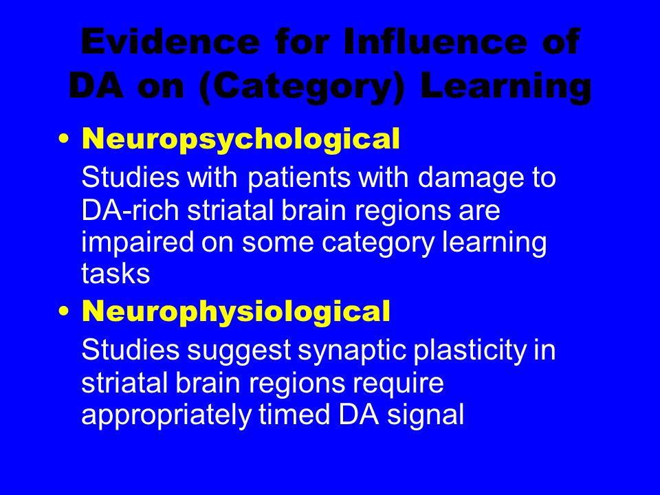 Evidence for Influence of DA on (Category) Learning Neuropsychological Studies with patients with damage to DA-rich striatal brain regions are impaired on some category learning tasks Neurophysiological Studies suggest synaptic plasticity in striatal brain regions require appropriately timed DA signal