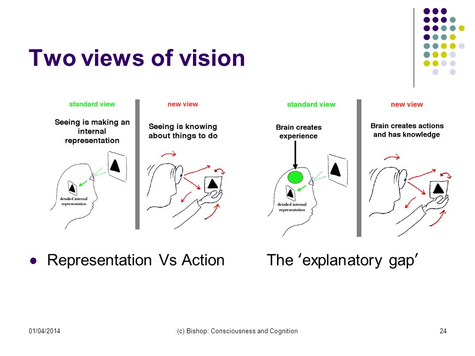 01/04/2014(c) Bishop: Consciousness and Cognition24 Two views of vision Representation Vs ActionThe explanatory gap