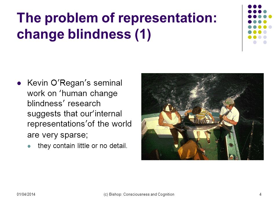 01/04/2014(c) Bishop: Consciousness and Cognition4 The problem of representation: change blindness (1) Kevin ORegans seminal work on human change blindness research suggests that ourinternal representationsof the world are very sparse; they contain little or no detail.