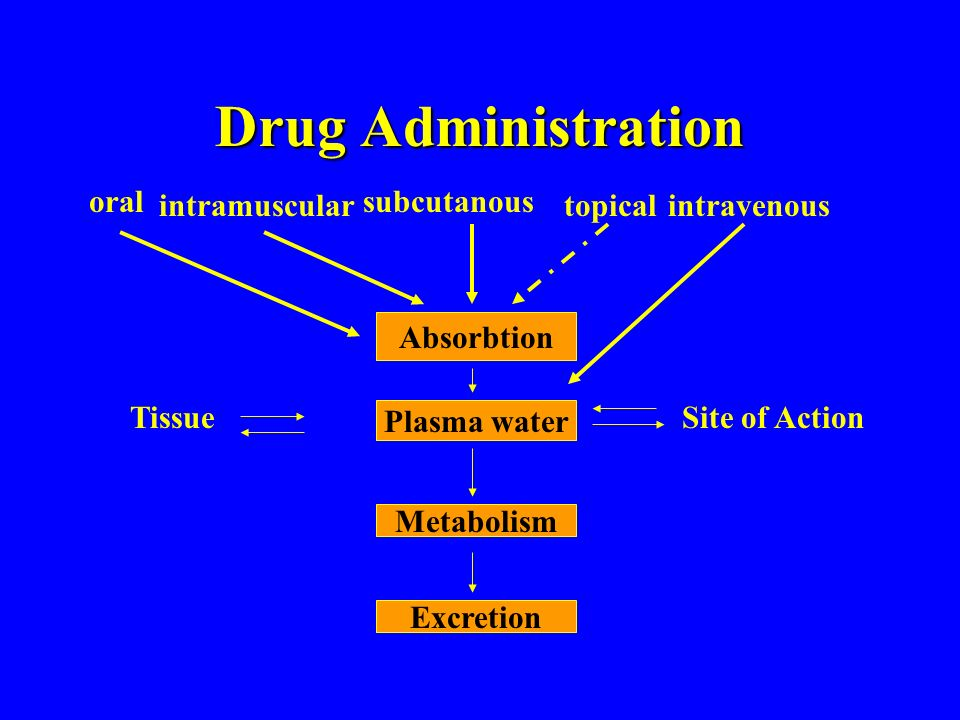 Drug Administration Absorbtion Plasma water Metabolism Excretion Site of ActionTissue oral intramuscular subcutanous topicalintravenous