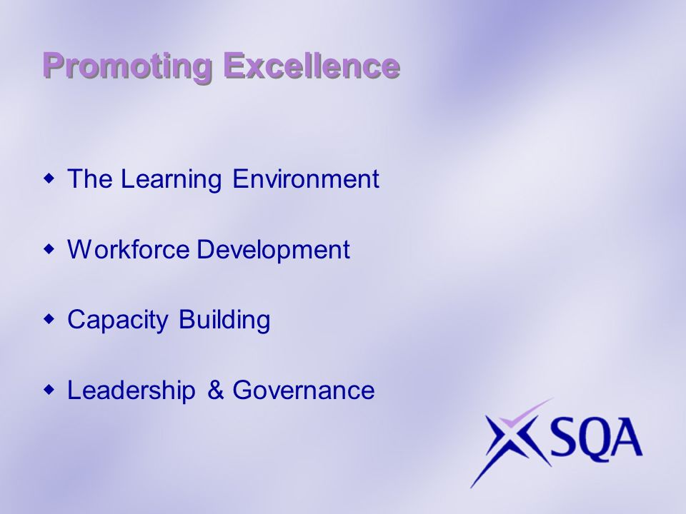 Promoting Excellence The Learning Environment Workforce Development Capacity Building Leadership & Governance