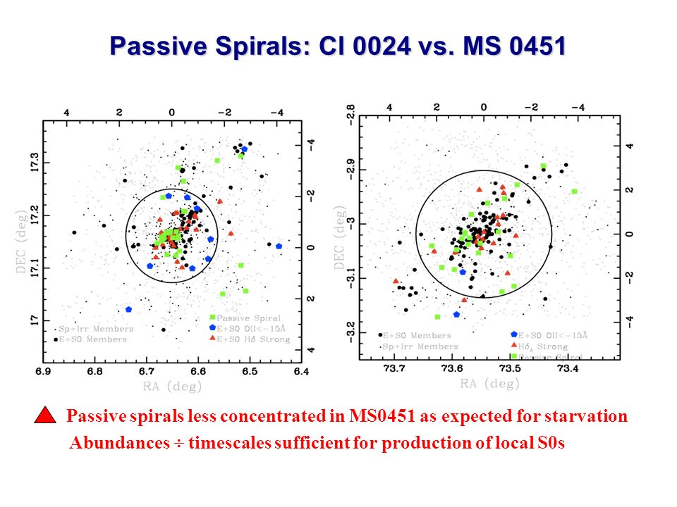 Passive spirals less concentrated in MS0451 as expected for starvation Abundances timescales sufficient for production of local S0s Passive Spirals: Cl 0024 vs.