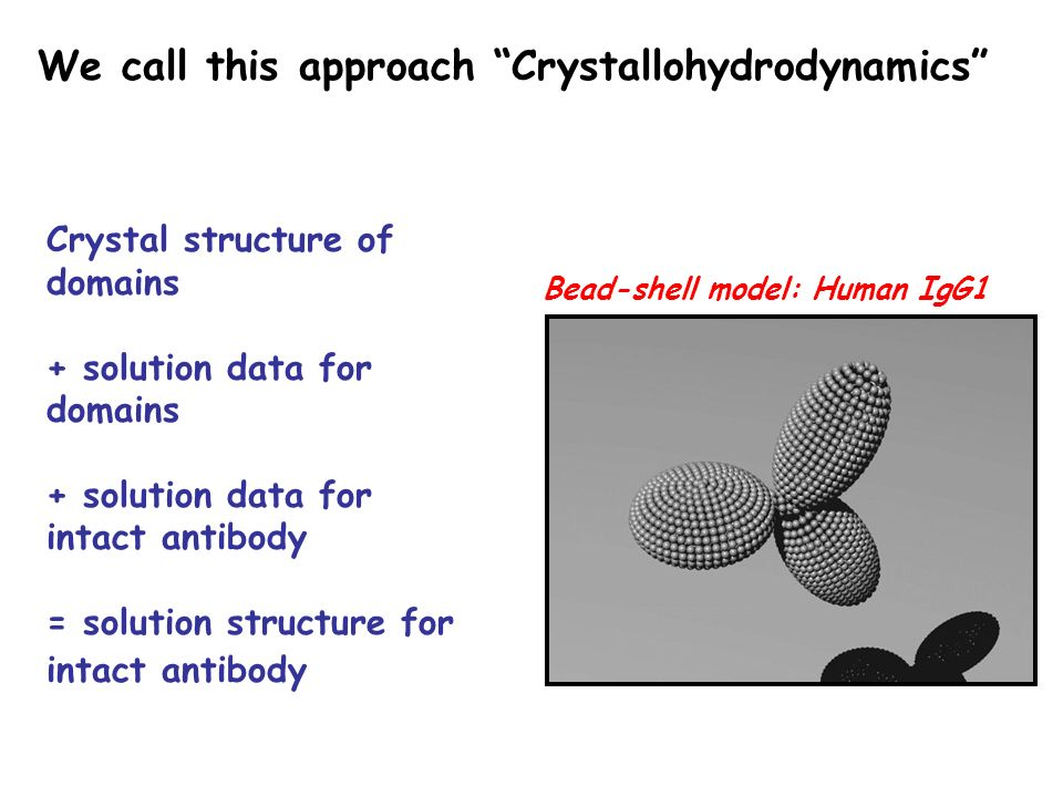 Bead-shell model: Human IgG1 Crystal structure of domains + solution data for domains + solution data for intact antibody = solution structure for intact antibody We call this approach Crystallohydrodynamics
