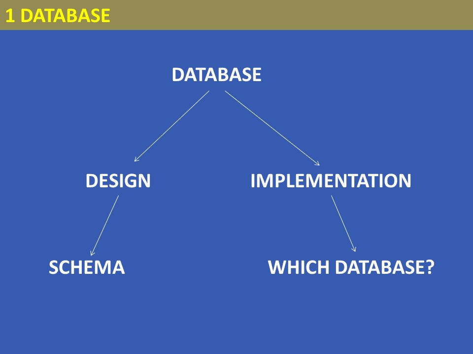 DATABASE 1 DATABASE DESIGNIMPLEMENTATION WHICH DATABASE SCHEMA