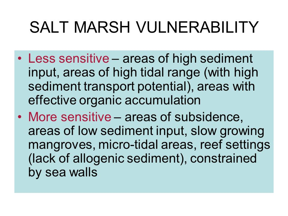 SALT MARSH VULNERABILITY Less sensitive – areas of high sediment input, areas of high tidal range (with high sediment transport potential), areas with effective organic accumulation More sensitive – areas of subsidence, areas of low sediment input, slow growing mangroves, micro-tidal areas, reef settings (lack of allogenic sediment), constrained by sea walls