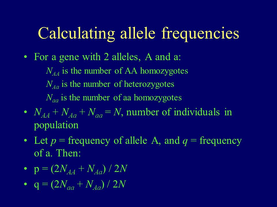Calculating allele frequencies For a gene with 2 alleles, A and a: N AA is the number of AA homozygotes N Aa is the number of heterozygotes N aa is the number of aa homozygotes N AA + N Aa + N aa = N, number of individuals in population Let p = frequency of allele A, and q = frequency of a.