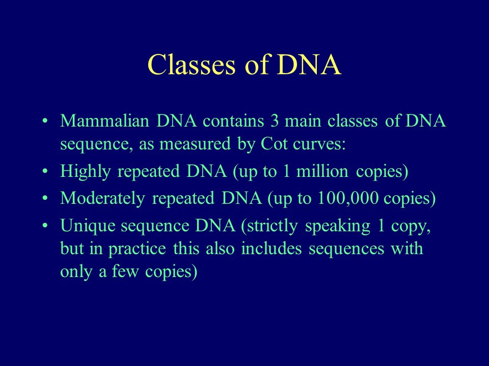 Classes of DNA Mammalian DNA contains 3 main classes of DNA sequence, as measured by Cot curves: Highly repeated DNA (up to 1 million copies) Moderately repeated DNA (up to 100,000 copies) Unique sequence DNA (strictly speaking 1 copy, but in practice this also includes sequences with only a few copies)