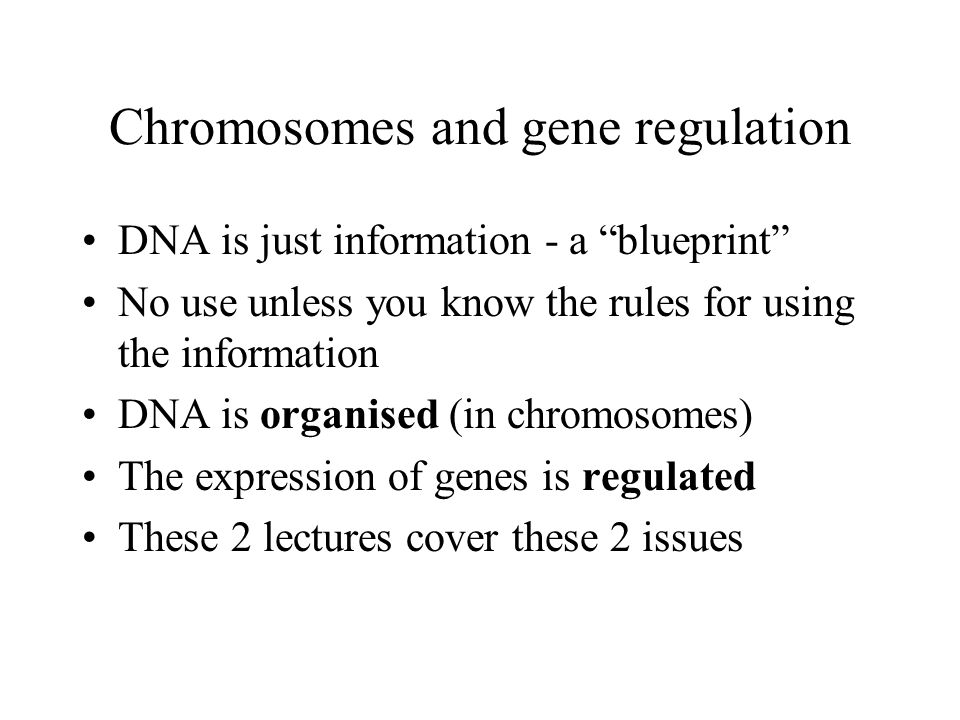 Chromosomes and gene regulation DNA is just information - a blueprint No use unless you know the rules for using the information DNA is organised (in chromosomes) The expression of genes is regulated These 2 lectures cover these 2 issues