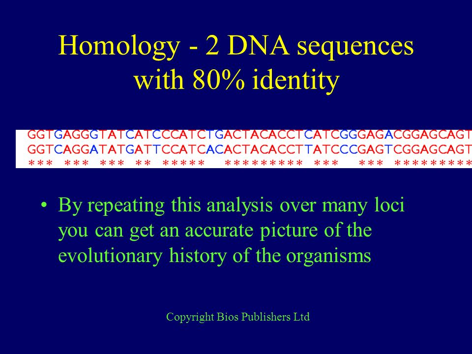 Homology - 2 DNA sequences with 80% identity By repeating this analysis over many loci you can get an accurate picture of the evolutionary history of the organisms Copyright Bios Publishers Ltd