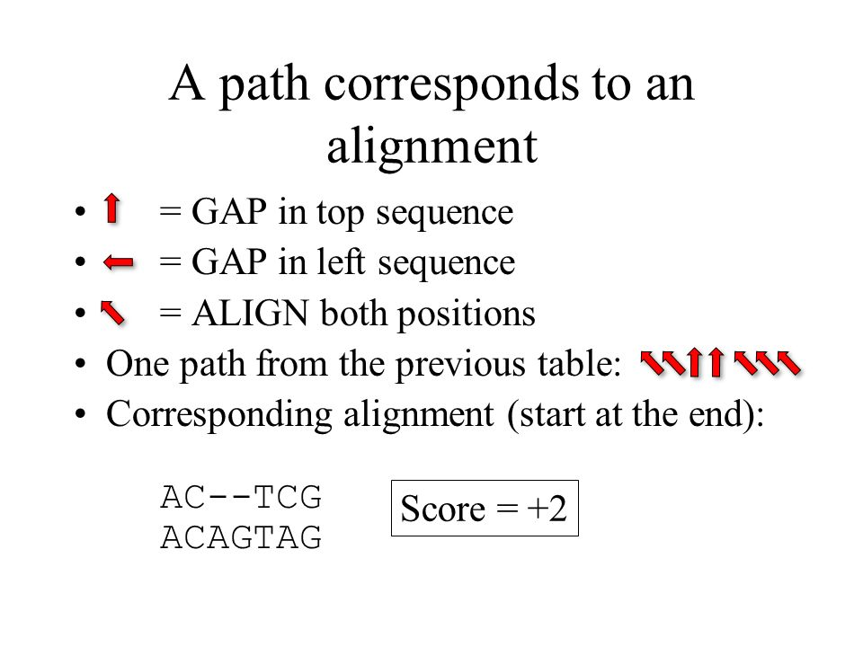 A path corresponds to an alignment = GAP in top sequence = GAP in left sequence = ALIGN both positions One path from the previous table: Corresponding alignment (start at the end): AC--TCG ACAGTAG Score = +2