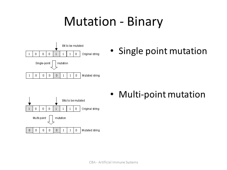 CBA - Artificial Immune Systems Mutation - Binary Single point mutation Multi-point mutation