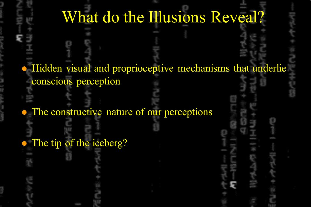 What do the Illusions Reveal.
