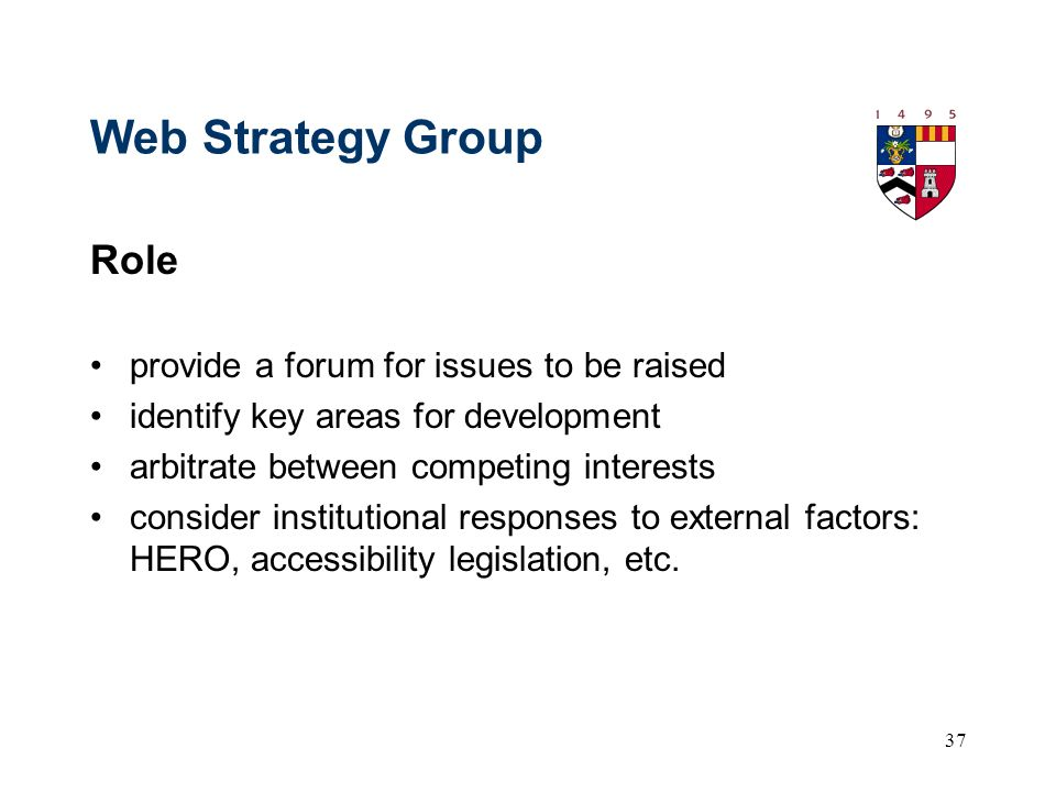 37 Web Strategy Group Role provide a forum for issues to be raised identify key areas for development arbitrate between competing interests consider institutional responses to external factors: HERO, accessibility legislation, etc.