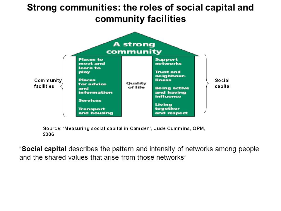 Social capital describes the pattern and intensity of networks among people and the shared values that arise from those networks Strong communities: the roles of social capital and community facilities