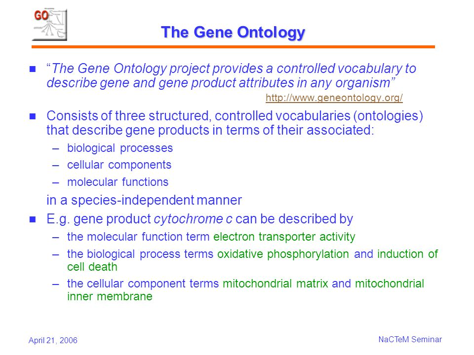 April 21, 2006 NaCTeM Seminar The Gene Ontology The Gene Ontology project provides a controlled vocabulary to describe gene and gene product attributes in any organism http://www.geneontology.org/ http://www.geneontology.org/ Consists of three structured, controlled vocabularies (ontologies) that describe gene products in terms of their associated: biological processes cellular components molecular functions in a species-independent manner E.g.