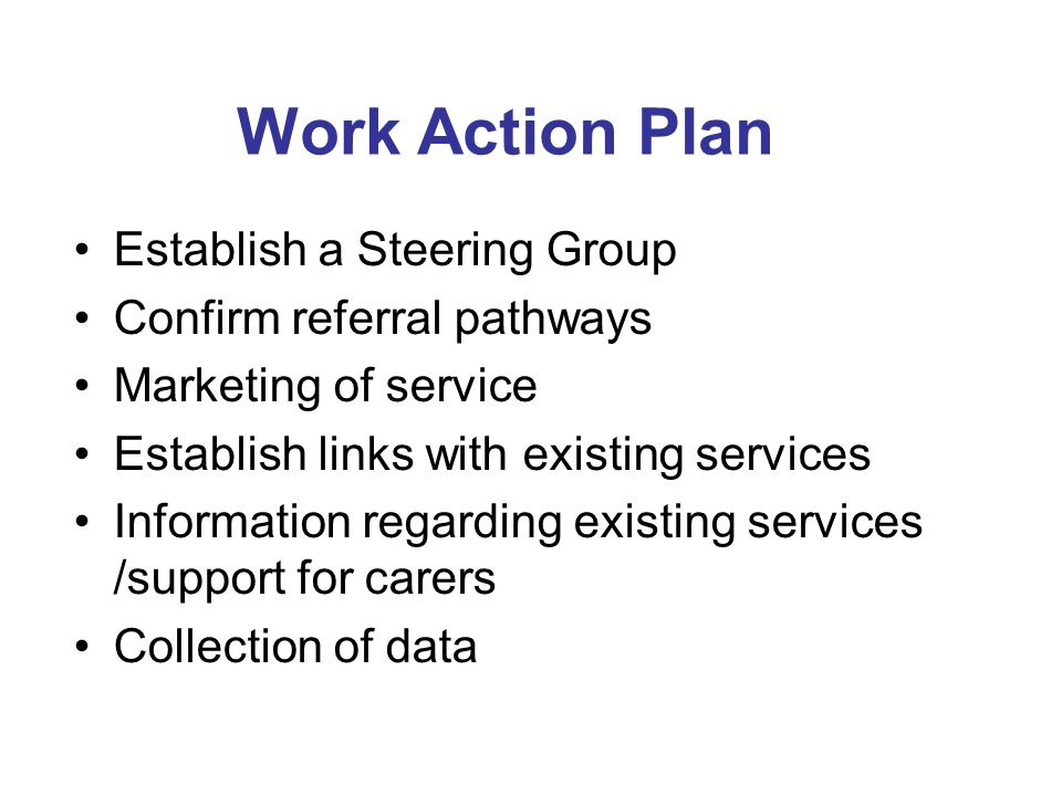 Work Action Plan Establish a Steering Group Confirm referral pathways Marketing of service Establish links with existing services Information regarding existing services /support for carers Collection of data